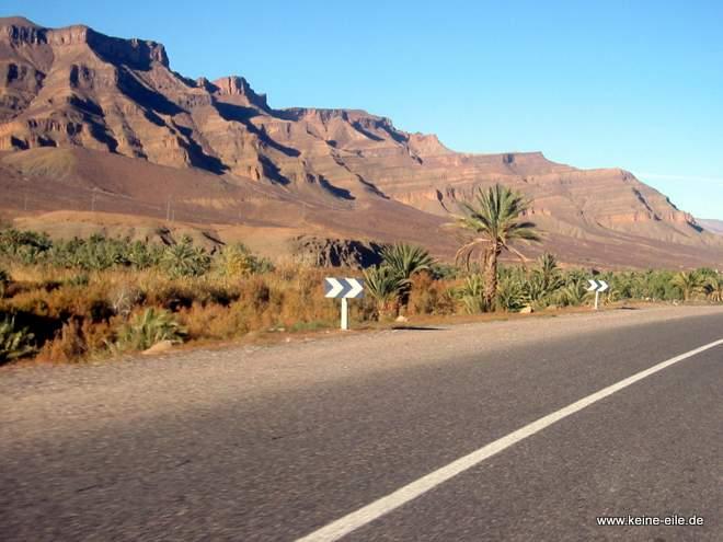 Roadtrip Marokko: Palmen säumen den Straßenrand