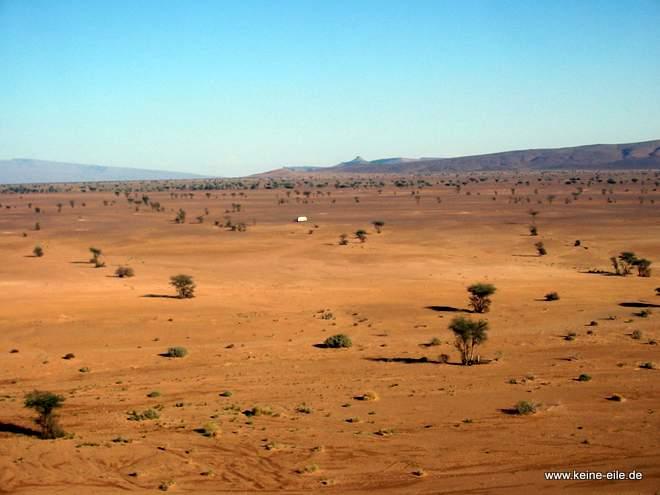 Roadtrip Marokko: Wüste bei Foum Zguid
