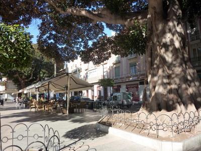 """Aguilas """"Plaza de Espana"""""""