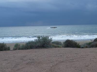 Playa Higuerica