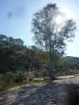 Barranco dos Acaides