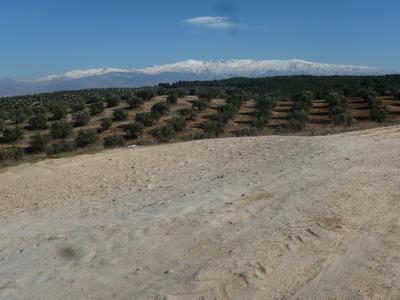 Blick auf die schneebedeckte Sierra Nevada