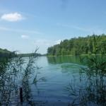 Der Liepnitzsee in Brandenburg