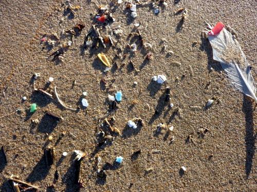 Praia do Carvalhal_3
