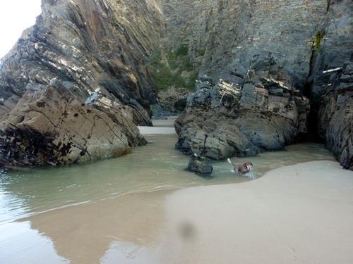 Praia do Carvalhal_5
