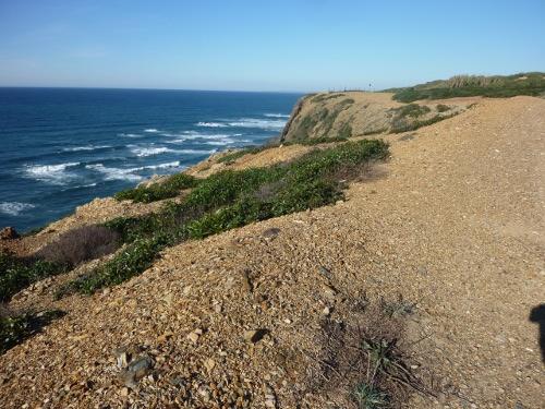 Praia Estevia