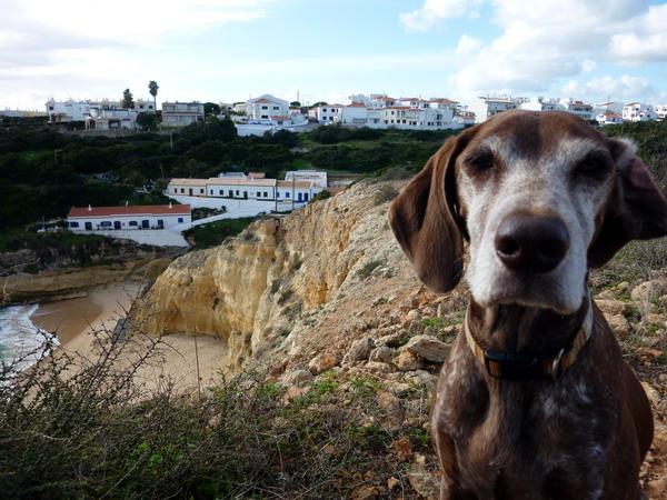 Portugal, Algarve, Reisebericht Praia da Marinha: Benagil: Wir hatten keine Lust hinunter zu gehen