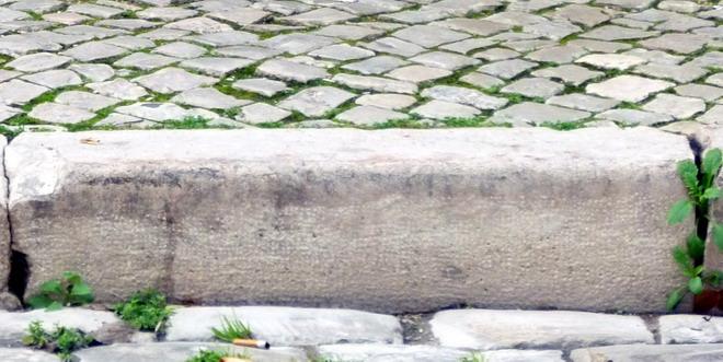 Stadtrundgang mit Hund