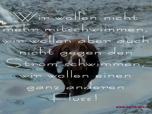 Wir wollen nicht mehr mitschwimmen, wir wollen aber auch nicht gegen den Strom schwimmer, wir wollen einen ganz anderen Fluss!