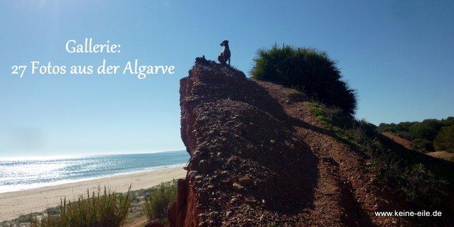 Artikelbild 27 Algarve Fotos