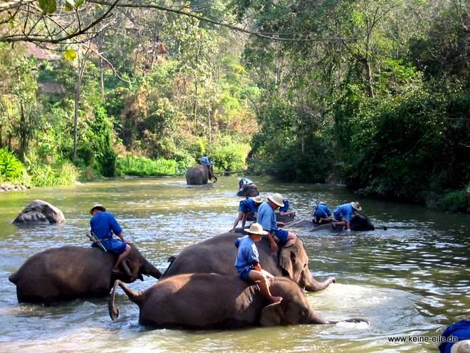 Im Elephant Conversation Center, Lampang, Thailand