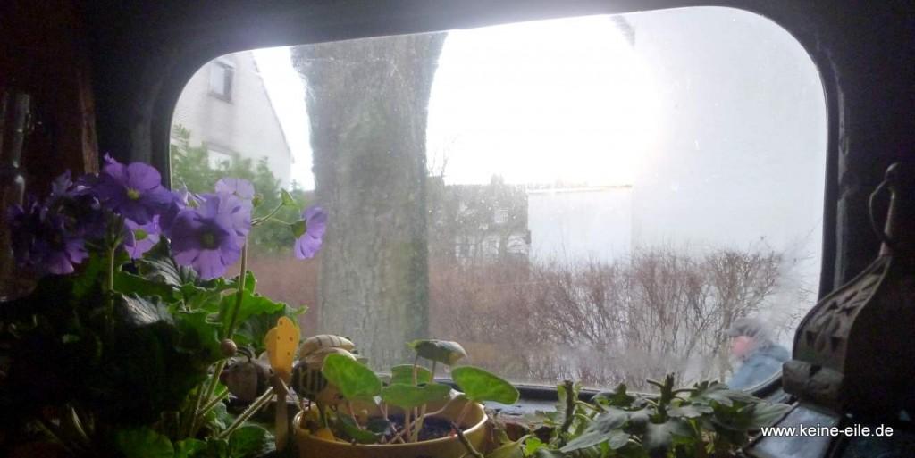 Blick aus dem Fenster - Bremen