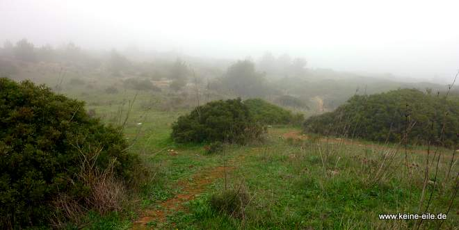 Nebel in der Algarve