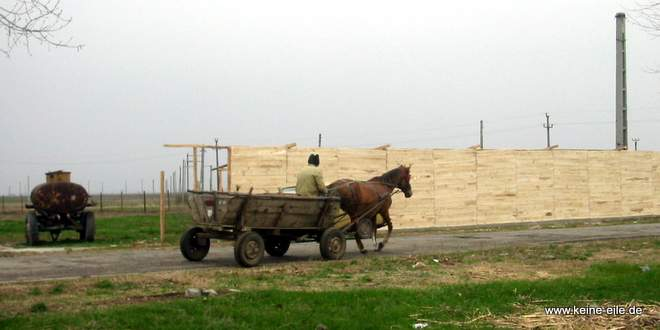 Radreise Rumänien: Pferdekutsche