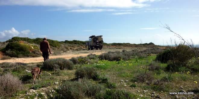 Überwintern im Süden: in der Nähe von Ferragudo auf den Klippen