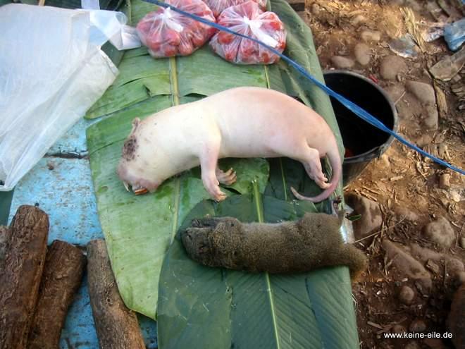 Auf einem Markt in Laos