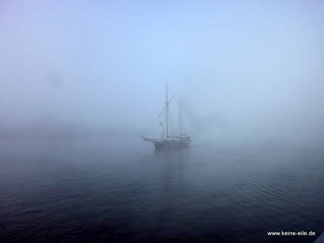 Nebel auf der Weser