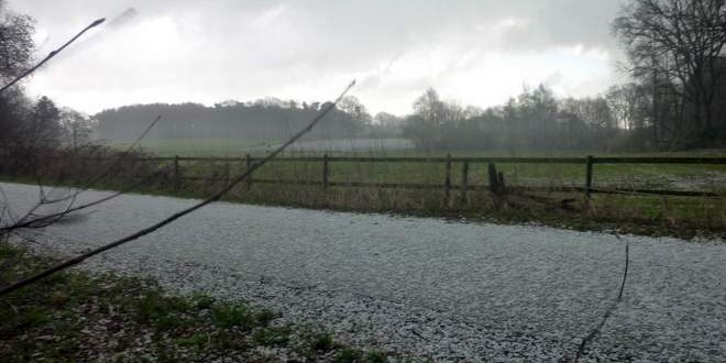 Hagel in #Ganderkesee