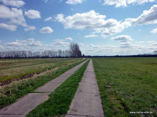 Radweg an der Havel