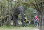 Motorradtour Afrika: Sambia