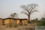 Motorradtour Afrika: Baobab in Malawi