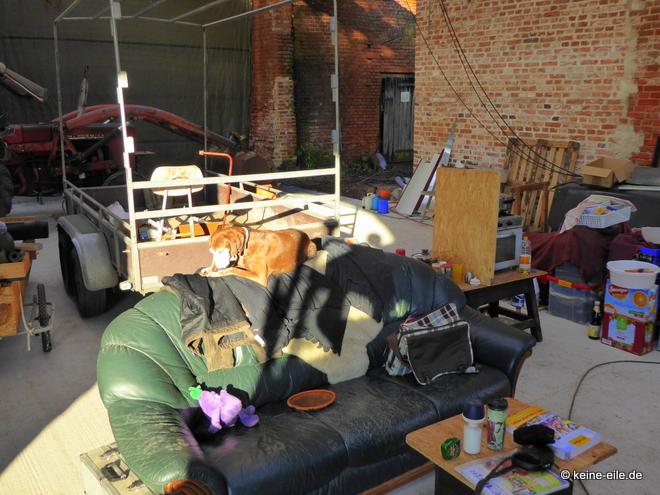 Wohnmobil Selbstausbau Lucy chillt derweil auf dem Sofa, das vor dem Laster in der Scheune steht