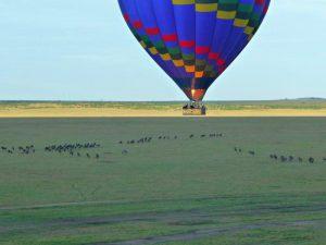 Overland Tour Ostafrika: Masai Mara Ballonfahrt