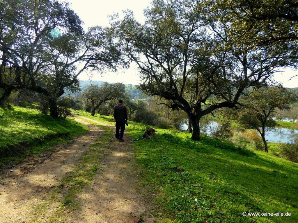 KE Bild Überwintern in Portugal Teil 8 Albufeira de Serpa