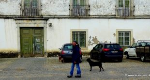 Überwintern in Portugal: Serpa