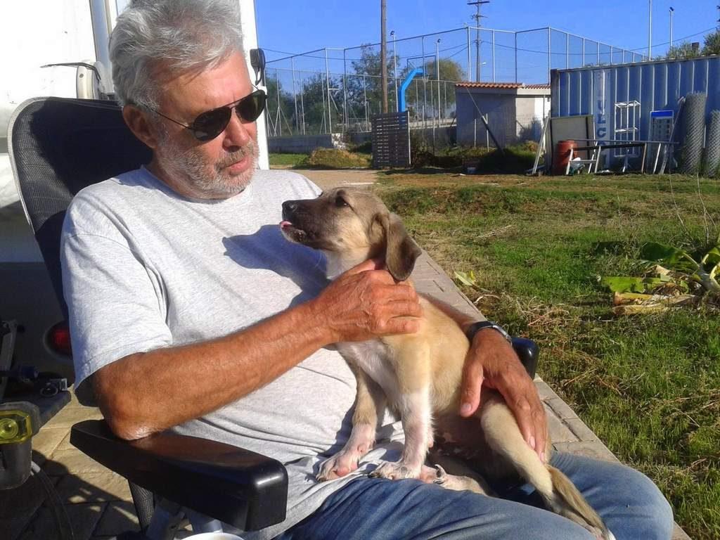 Welpen adoptieren: Kali in seinem neuen Zuhause