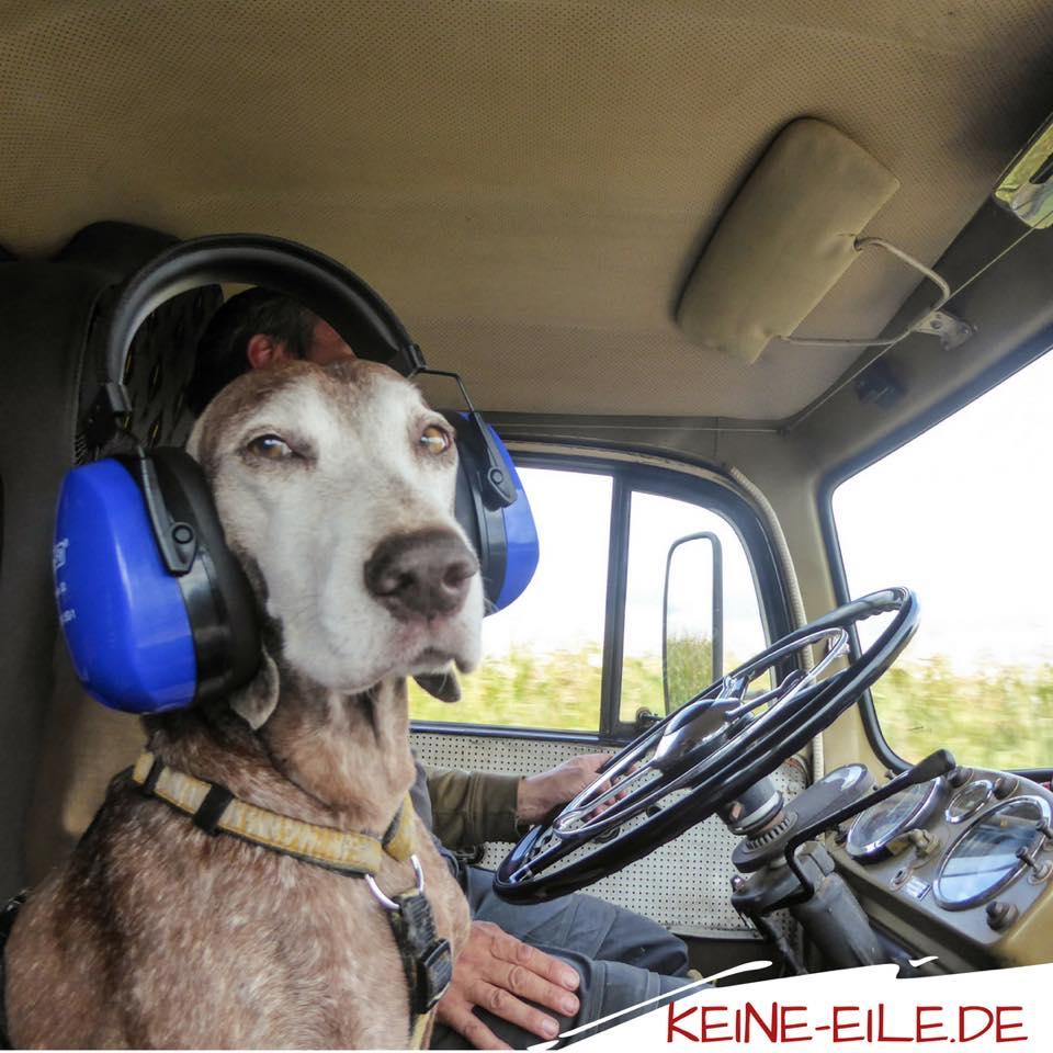 Anreise Griechenland: Lucy mit Gehörschutz