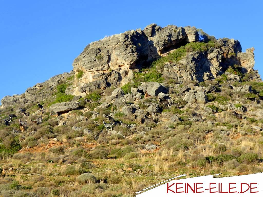 Kato Korogona: Na, wer versteckt sich den hier im Berg?