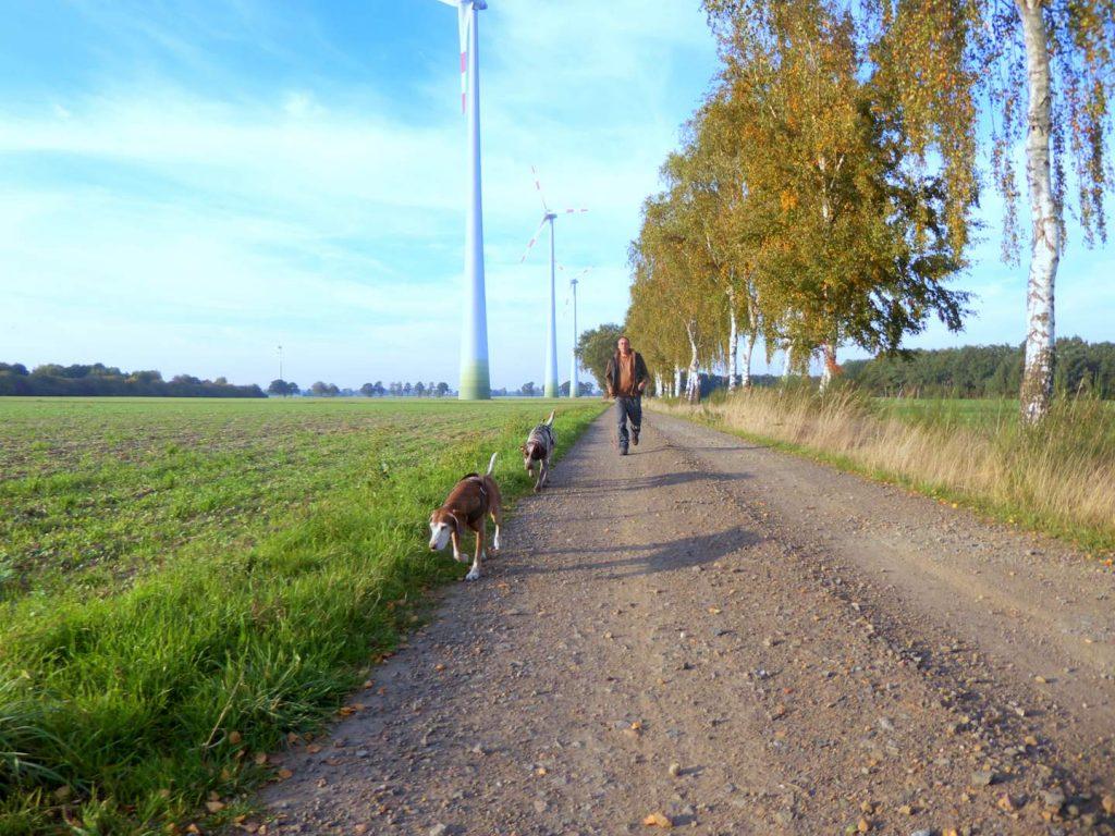 Pflegestelle Hund Greta und Lucy