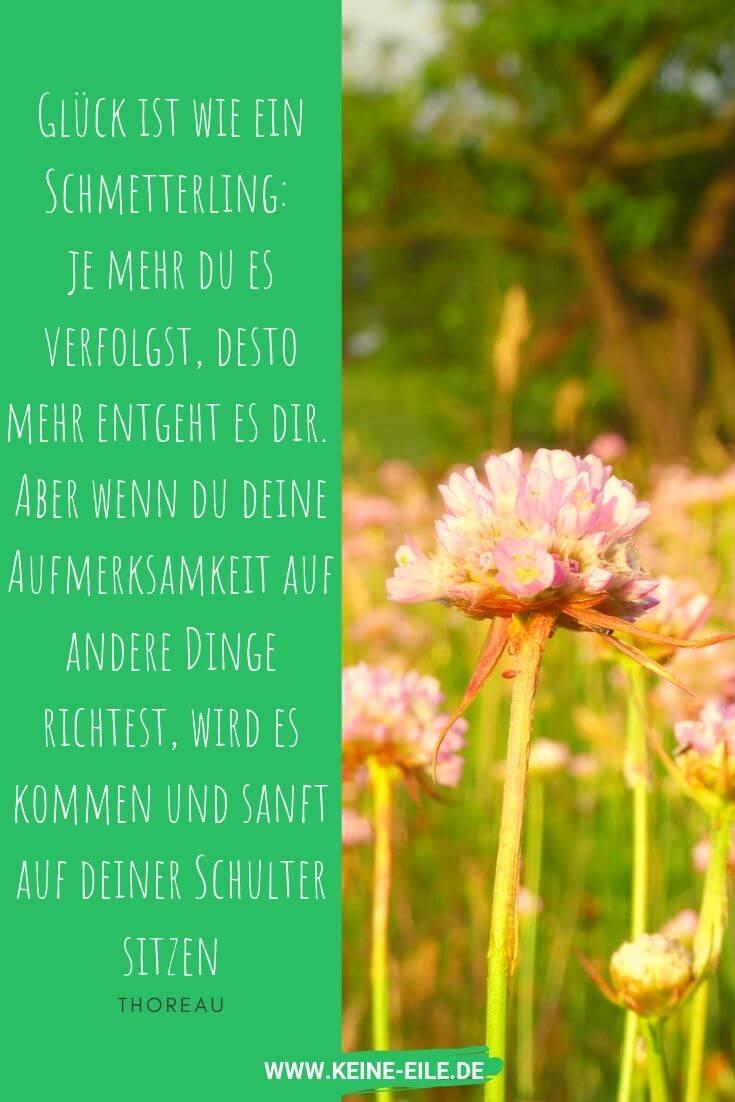 """""""Glück ist wie ein Schmetterling: je mehr du es verfolgst, desto mehr entgeht es dir. Aber wenn du deine Aufmerksamkeit auf andere Dinge richtest, wird es kommen und sanft auf deiner Schulter sitzen."""" Thoreau"""
