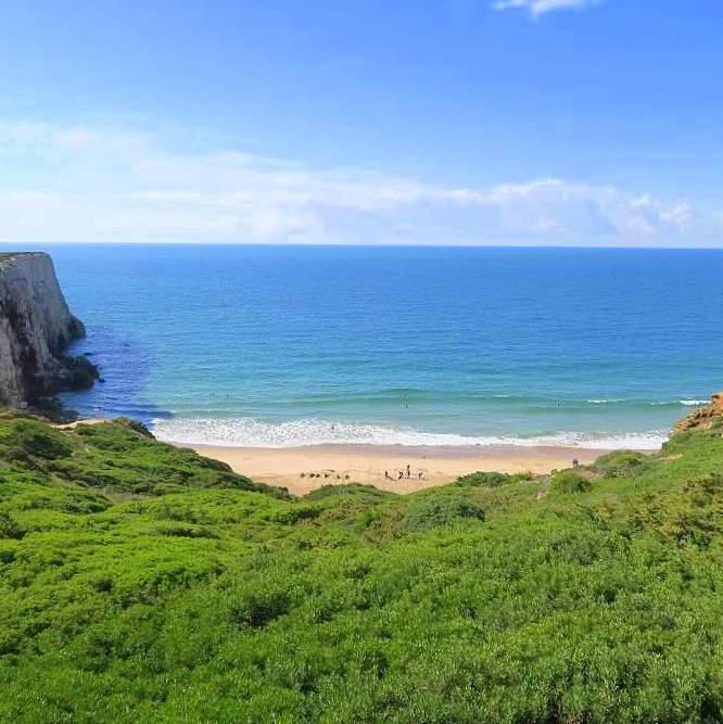 Surfen Portugal: Beliche