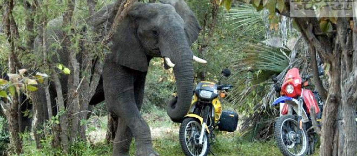 Motorradtour südliches Afrika